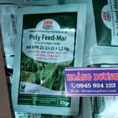 phan-bon-poly feed mar 21-11-21 haifa