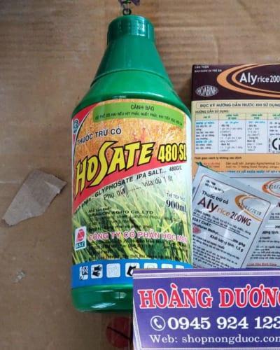 thuốc đặc trị cỏ mần trầu tận gốc